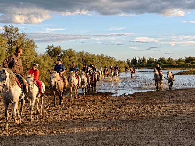 Promenades à cheval, en calèche