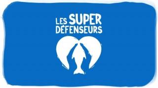 le-seaquarium-du-grau-du-roi-super-defenseur-1845