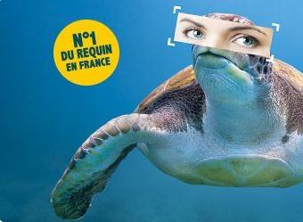 le-grauduroi-le-seaquarium-1249