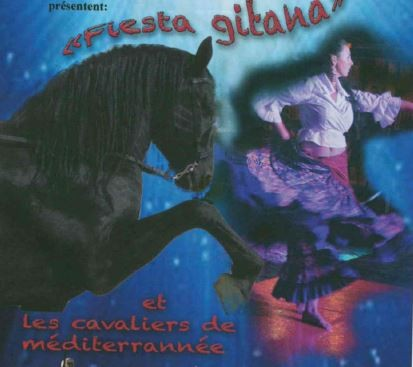 spectacle-equestre-cavaliers-des-dunes-le-grau-du-roi-845