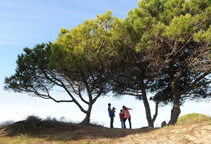visite-de-la-pinede-du-boucanet-le20-avril-au-grau-du-roi-1346