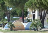 jardins-des-sculptures-port-camargue-640x480-1118