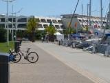promenade-a-pied-port-camargue-plaisance-3-1108