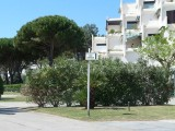 promenade-a-pied-port-camargue-plaisance-8-1113