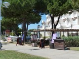 promenade-a-pied-port-camargue-quai-laperouse-2-1116