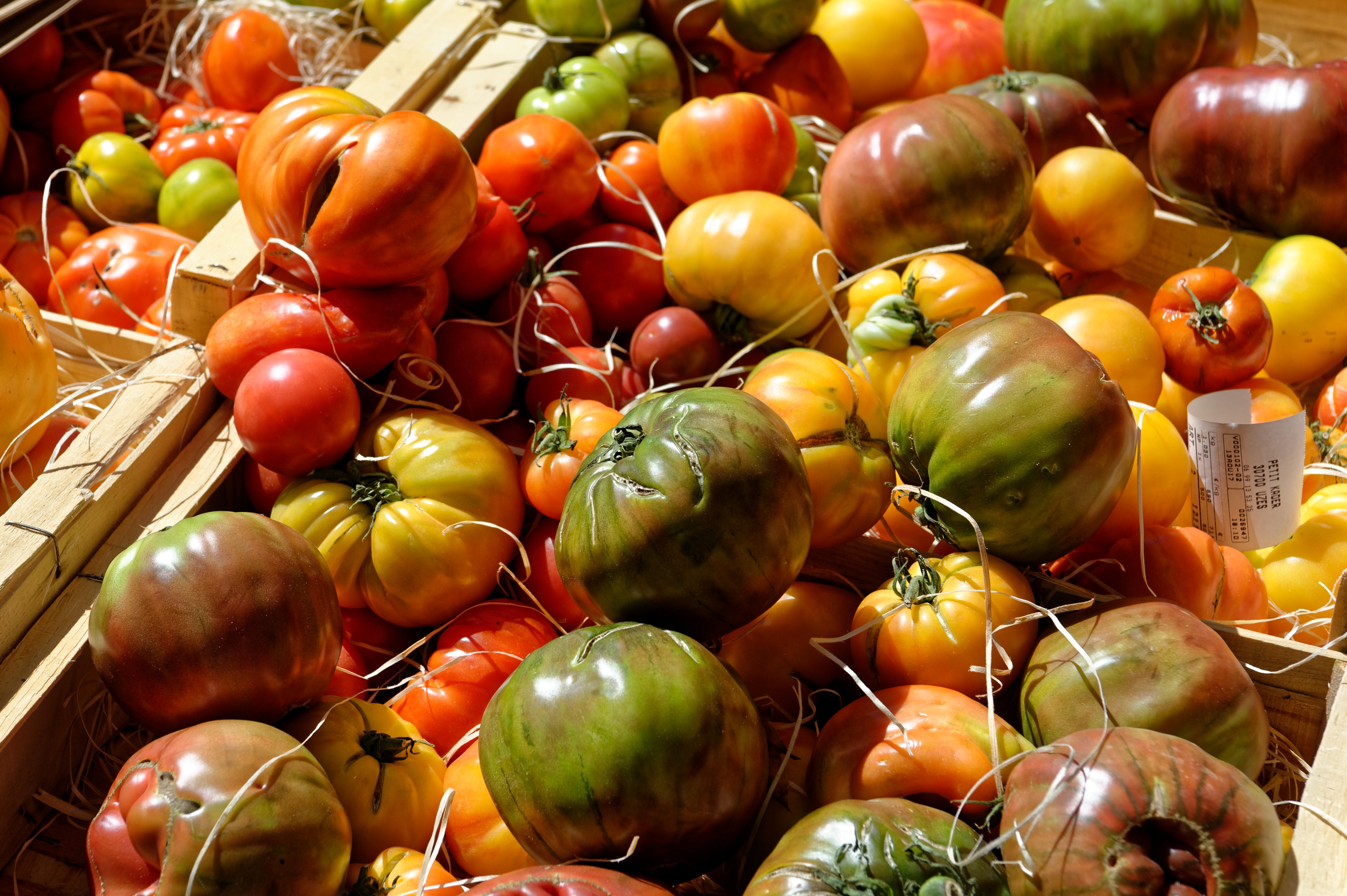 fruitsetlegumesdesaisonlocal-6704