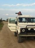 safari-camargue-le-grauduroi2-2-1397-7179