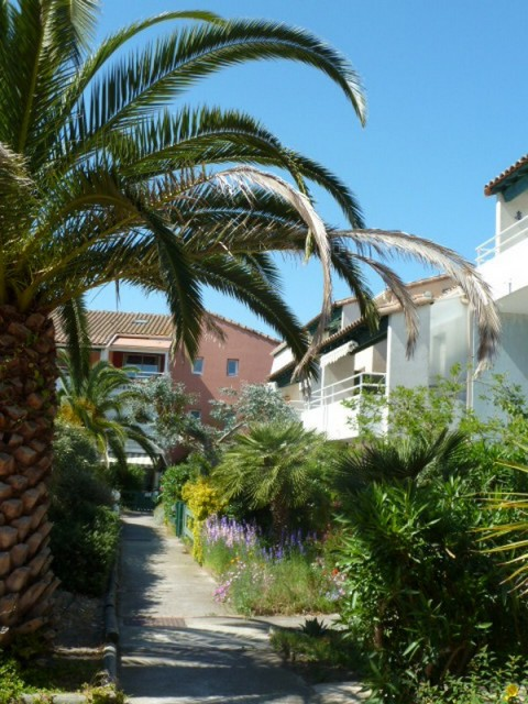 villa-p3-grau-du-roi-aubry-6-301