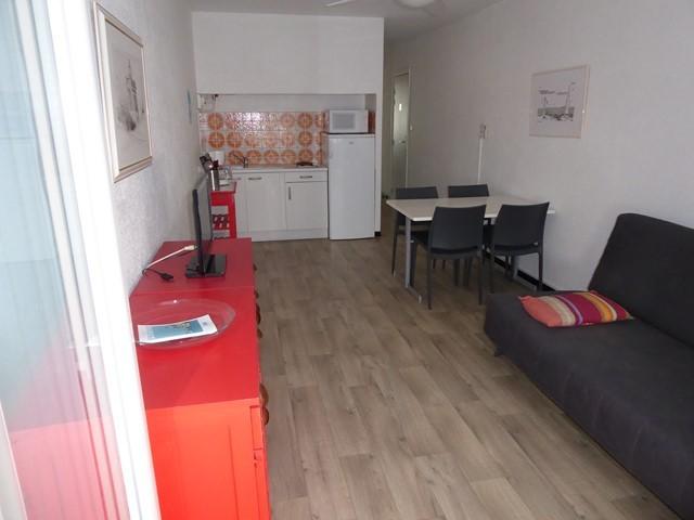 appartement-4-personnes-rive-droite-senappetrevier-lets-grauduroi-canape-4941