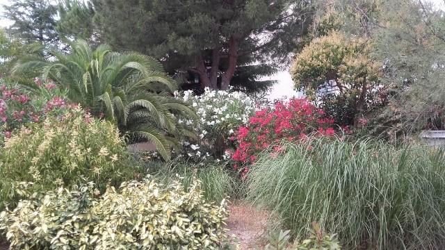 jardin-appartement-crozat-legrauduroi-4591