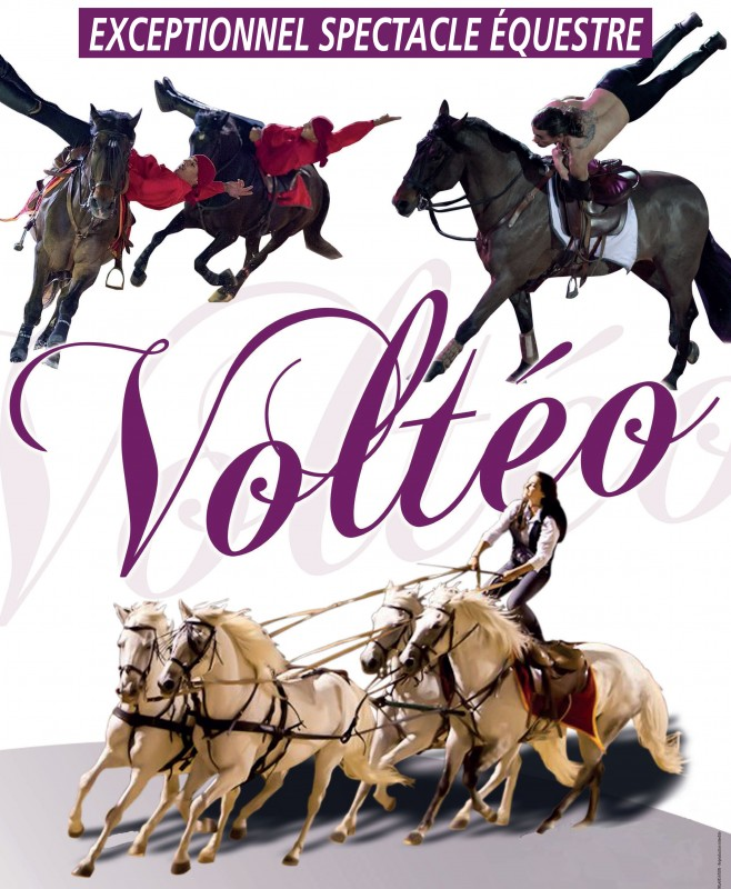 spectacle-equestre-volteo-pg-5807